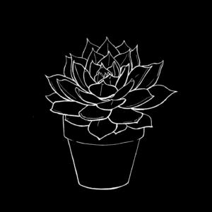 Chalk Plant